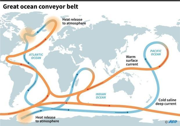 The system of ocean currents that regulates global weather