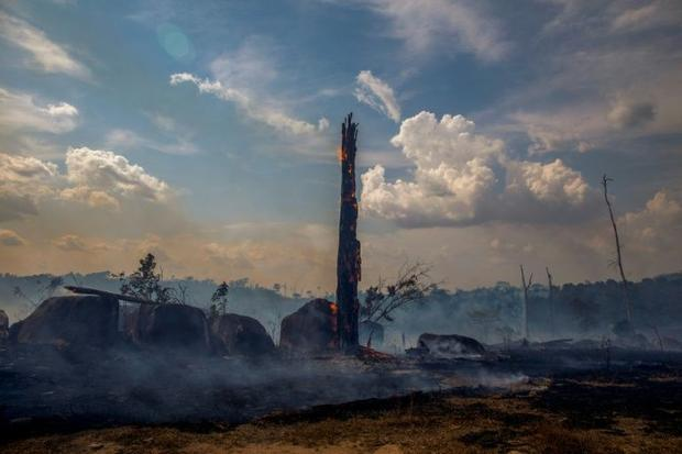 In Brazil 88 816 fires were recorded from January to the end of August
