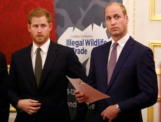 The announcement reportedly caused acrimony between Prince Harry and his elder brother Prince Willia...