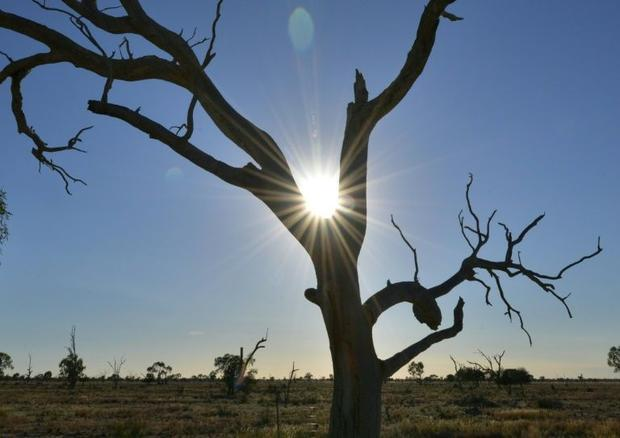 Seven of Australia's 10 warmest years on record have occurred since 2005  with only 2011 cooler...