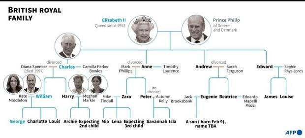 British royal family tree  highlighting the line of succession.