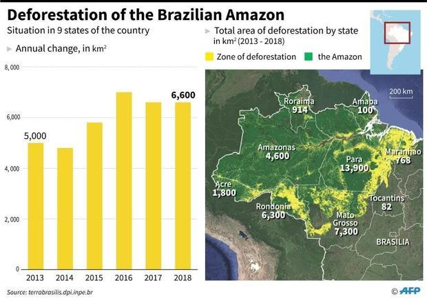 Progression of deforestation in the Brazilian Amazon  with total area by state