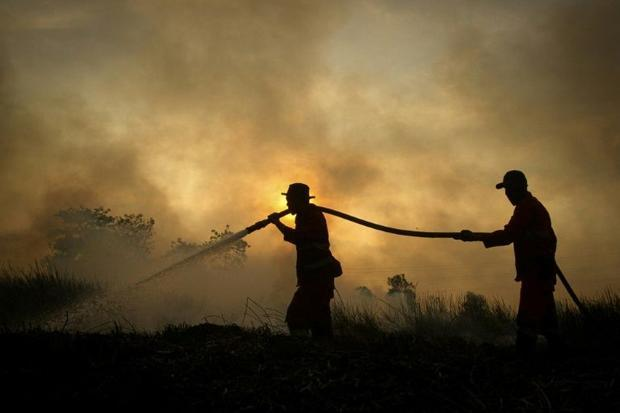 Mankind's reliance on fossil fuels usually receives much of the blame for climate change but sc...