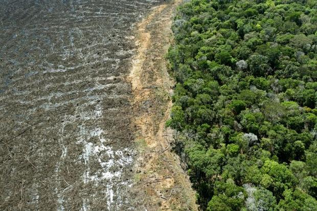 This file photo taken on August 7  2020 shows a deforested area of Brazil's Amazon rainforest i...