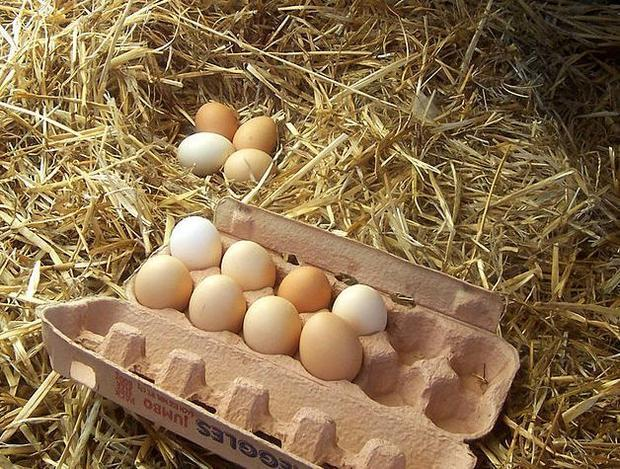 The price of eggs is soaring  higher than a chicken can fly.