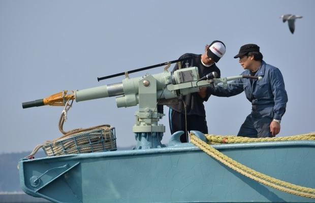 Leaving the International Whaling Commission means Japanese whalers will be able to resume hunting i...