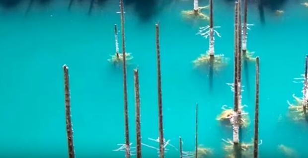The turquoise waters of lake Kaindy are striking.